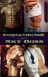 Revenge Gay Erotica Bundle by Sky Boss