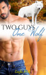 Two Guys, One Wolf by Layla Hart