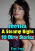Erotica: A Steamy Night: 10 Dirty Stories by Tina Long