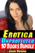 Erotica: Unprotected: 10 Books Bundle by Javin Strome
