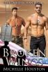 Broken Wings by Michelle Houston