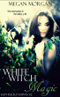 White Witch Magic (Kentucky Haints #2) by Megan Morgan
