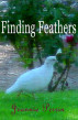 Finding Feathers by Jeannie Perrin