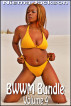BWWM Bundle - Volume 4 (Interracial Romance BWWM) by Niema Jackson