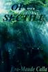 Opus Sectile by Eva-Maude Calla