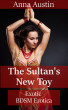 The Sultan's New Toy by Anna Austin