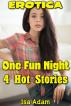 Erotica: One Fun Night: 4 Hot Stories by Isa Adam