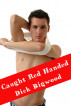 Caught Red Handed: Gay Taboo Household Erotica by Alice B Handcock