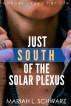Just South of the Solar Plexus by Mariah L Schwarz