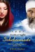 Scheherazade: Nights 1-3 by J R C Salter