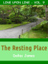 The Resting Place: Line upon Line: Vol. 9 by Dallas James