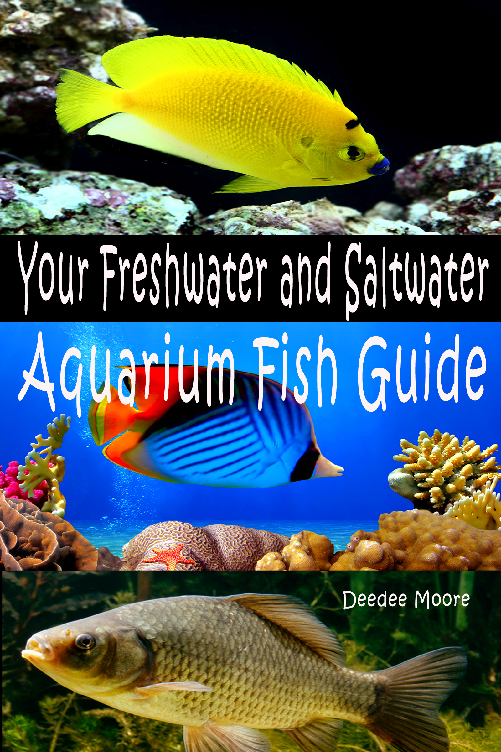 Freshwater aquarium fish guide - Your Freshwater And Saltwater Aquarium Fish Guide