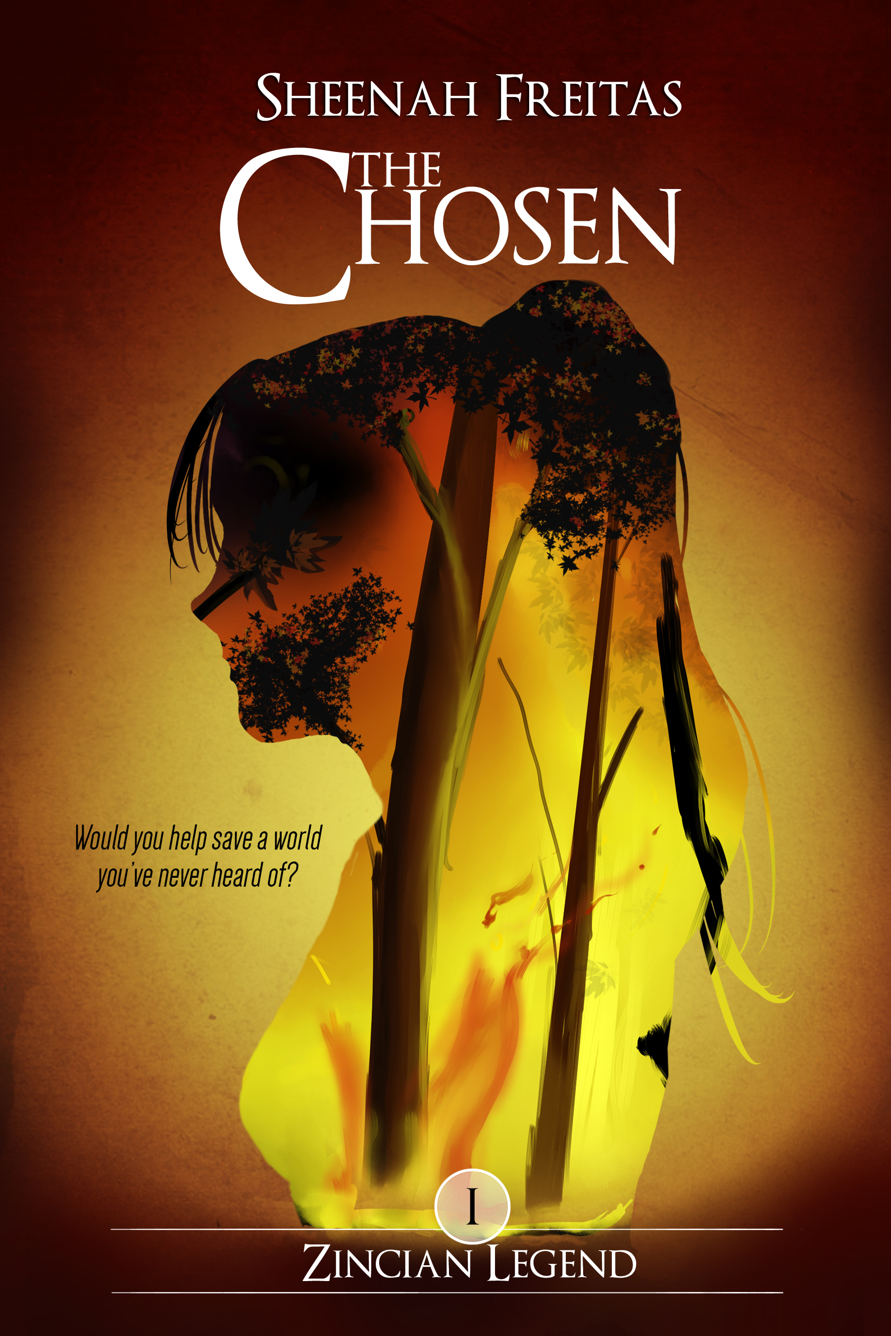 an experience in brooklyn in the chosen by chaim potok
