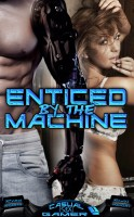 "Randi Holiday & Ryan Andrews - Enticed by the Machine (Book 1 of ""Casual [sex] Gamer"")"