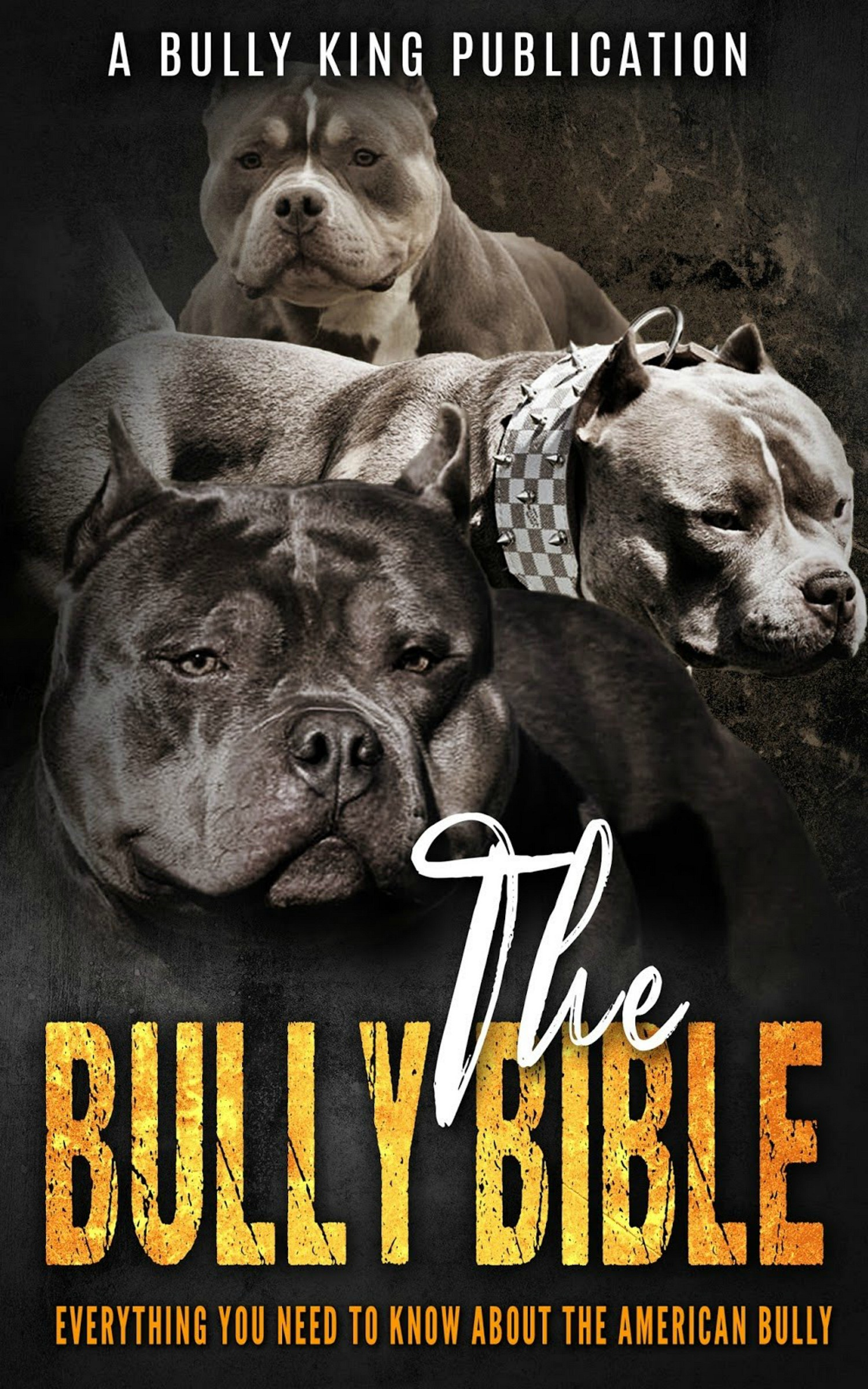 The Bully Bible: Everything You Need To Know About The American Bully, an  Ebook by Bully King Magazine
