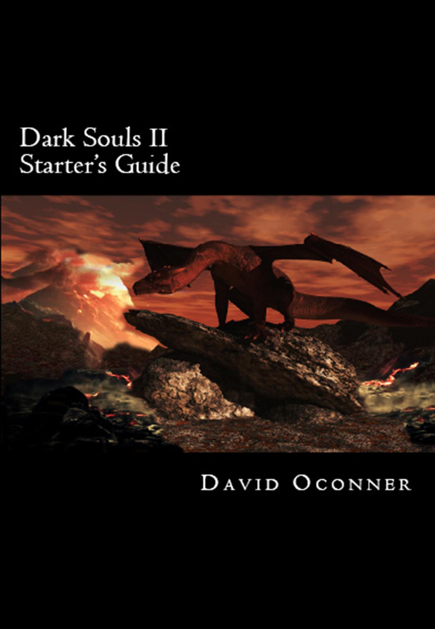 Dark Souls 2 Guide Book