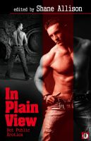 Shane Allison - In Plain View: Hot Public Erotica