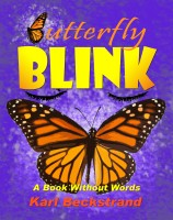 Karl Beckstrand - Butterfly Blink: A Book Without Words