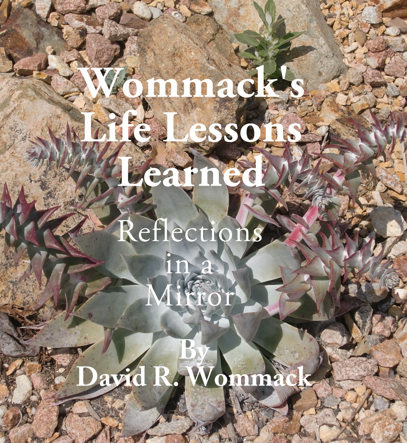 Wommacks Life Lessons Learned: Reflections in a Mirror