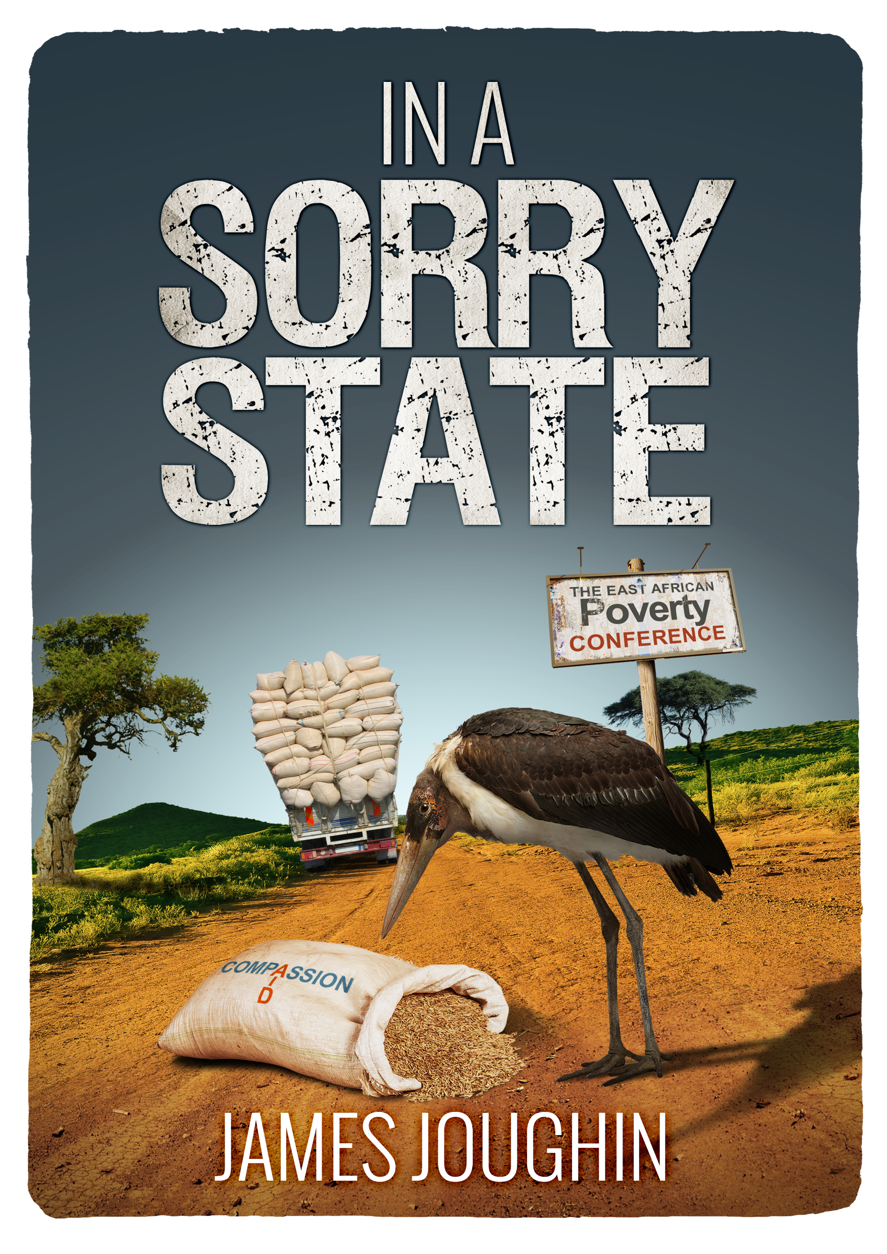 In A Sorry State, an Ebook by James Joughin