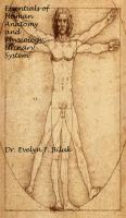 Cover for 'Essentials of Human Anatomy and Physiology: Urinary System'