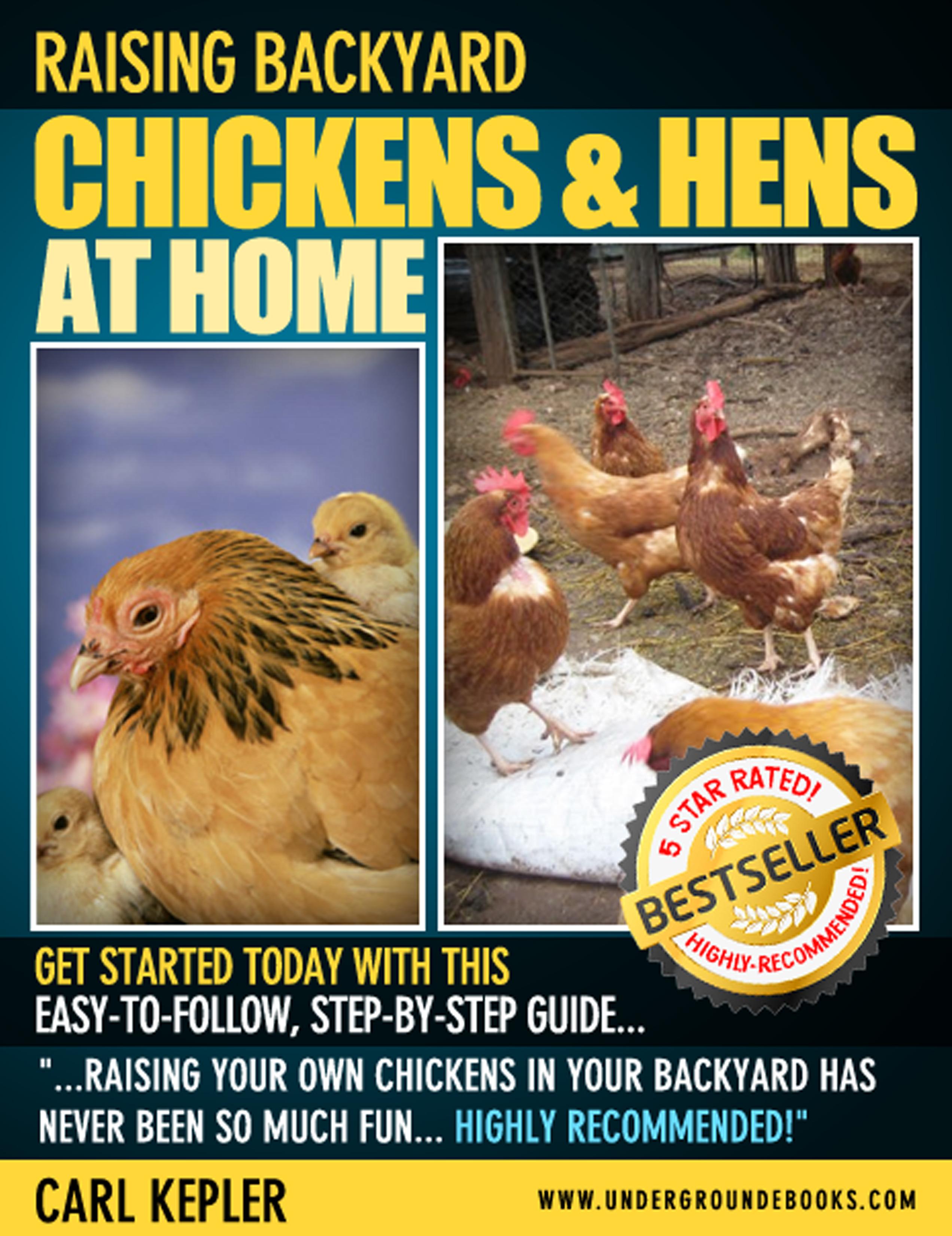 Smashwords Raising Backyard Chickens Hens At Home A Book By