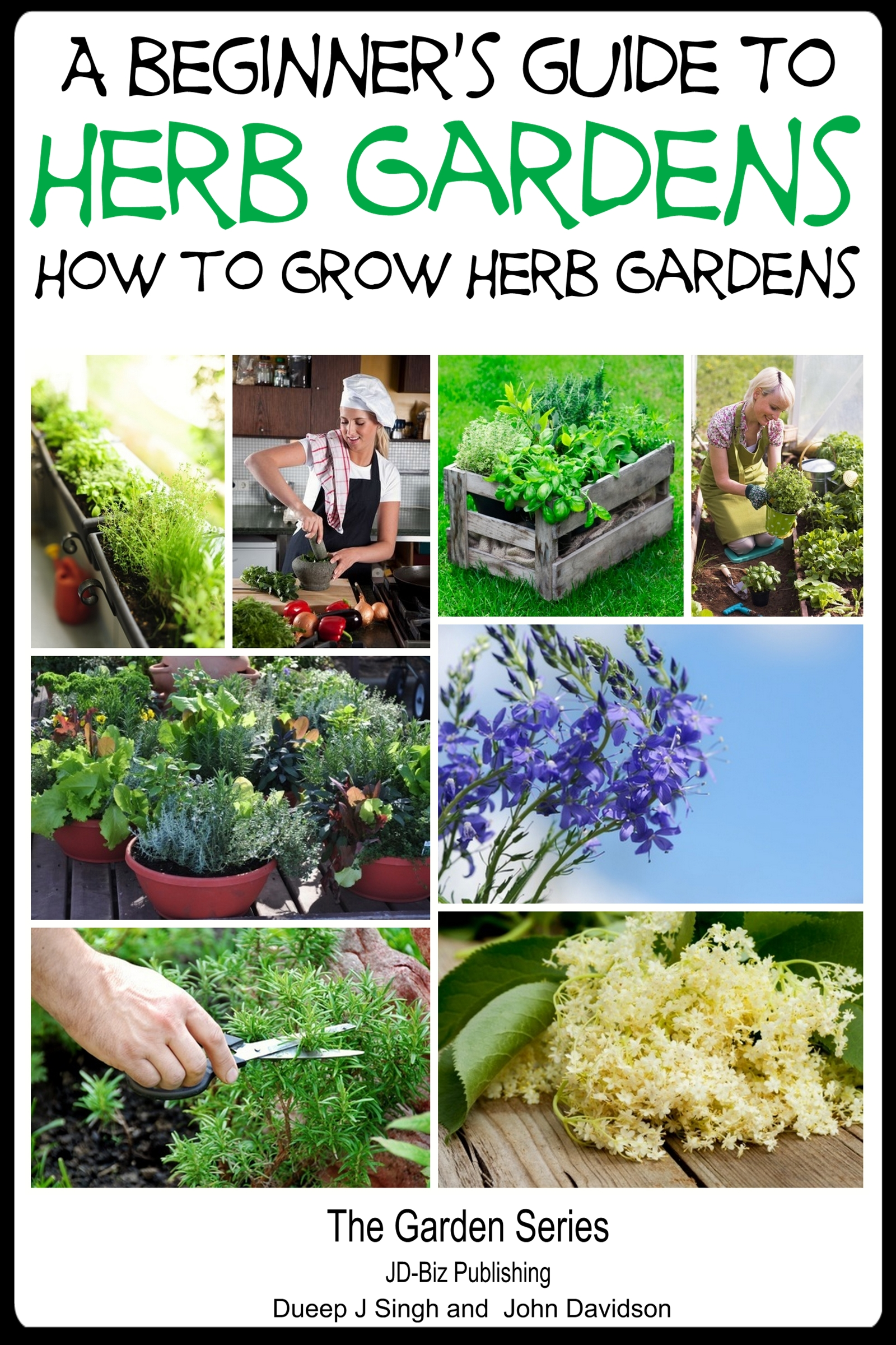 A Beginneru0027s Guide To Herb Gardening   How To Grow Herb Gardens