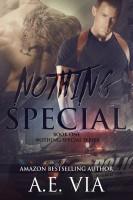 A.E. Via - Nothing Special