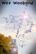 Wet Weekend by Robert Kloth