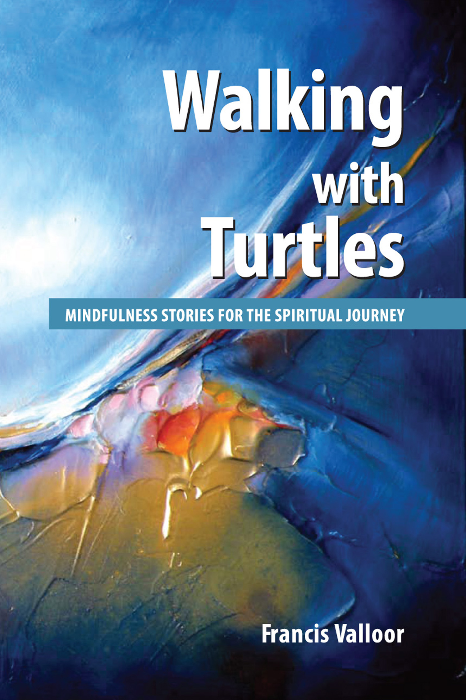 Walking with Turtles : Mindfulness Stories For The Spiritual Journey, an  Ebook by Francis Valloor