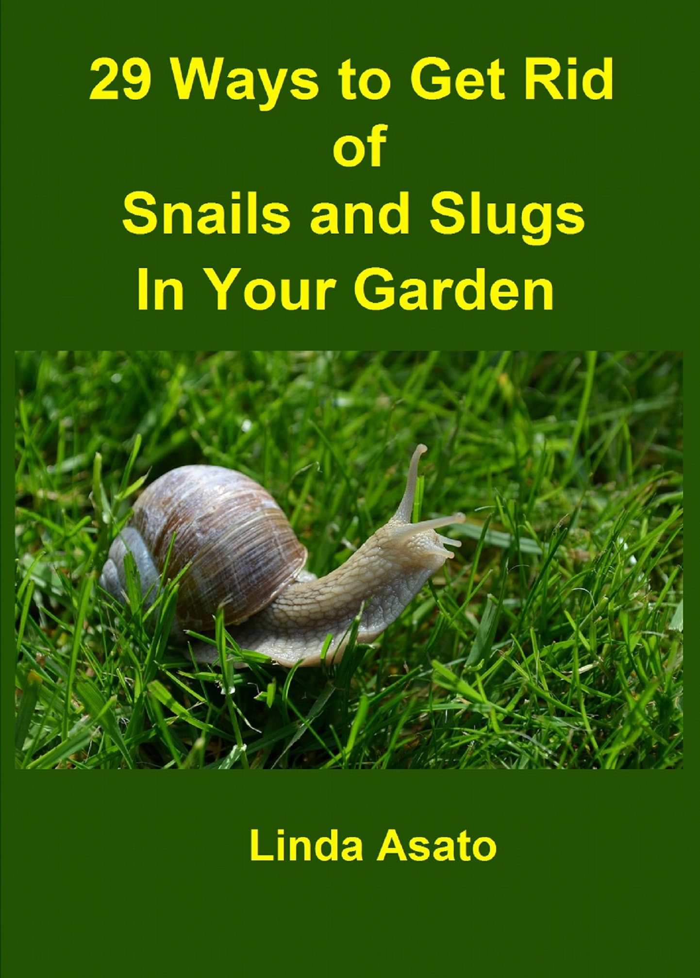 29 Ways to Get Rid of Snails and Slugs in Your Garden