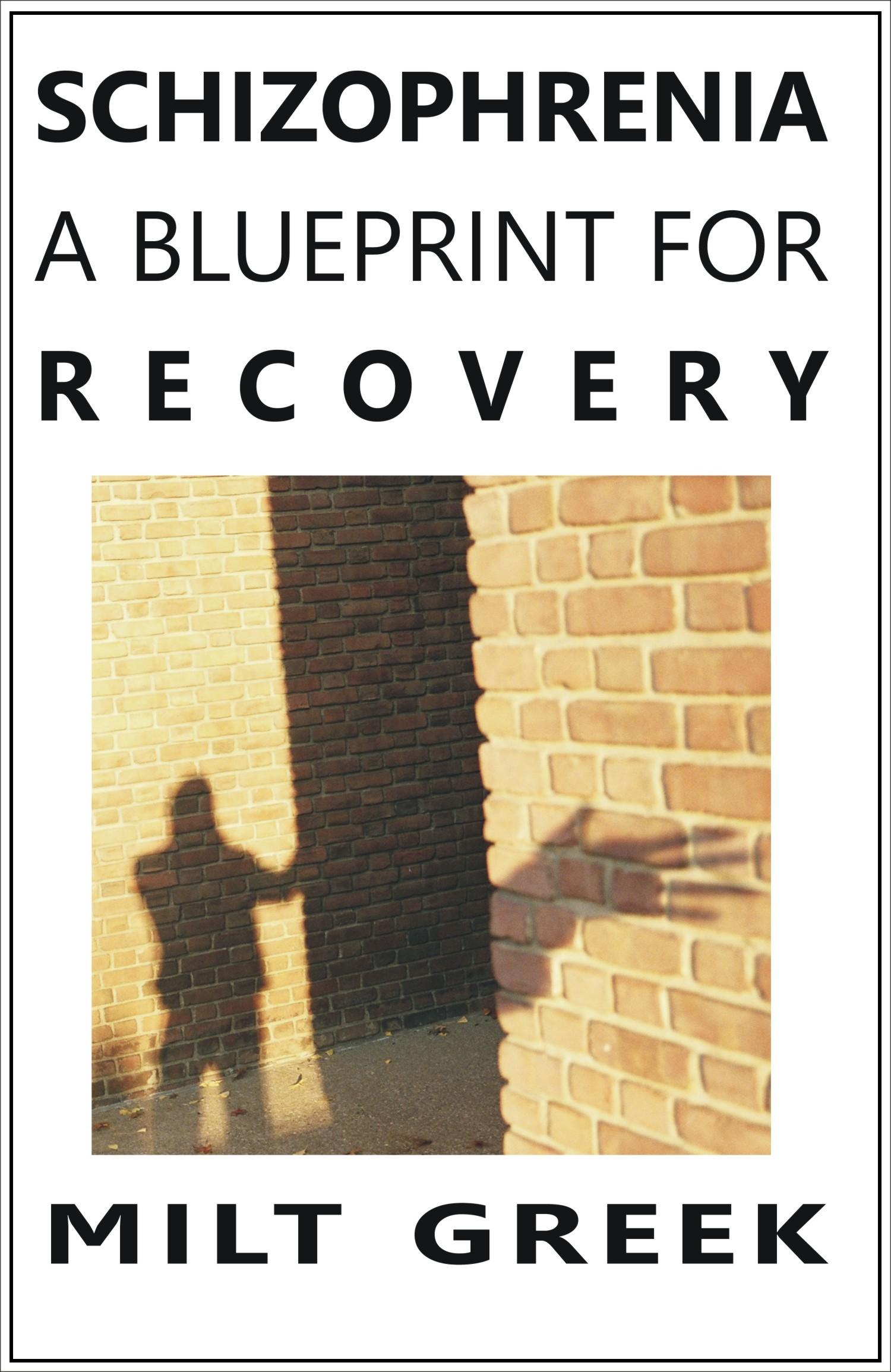 Schizophrenia: A Blueprint for Recovery, an Ebook by Milt Greek