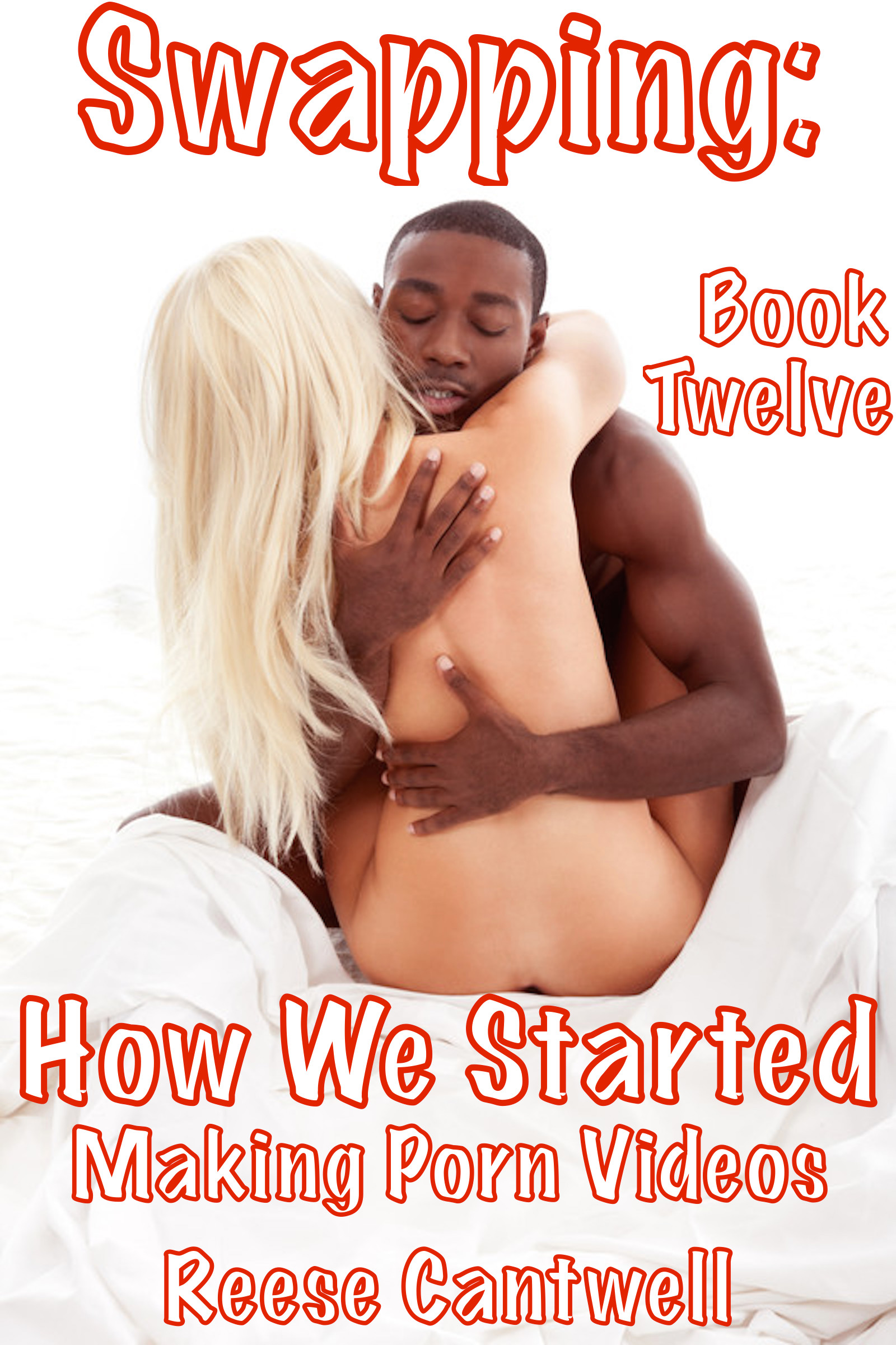 Swapping How We Started Making Porn Videos Book Twelve