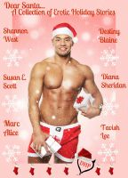 Shannon West - Dear Santa...A Collection of Erotic Holiday Stories