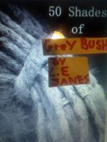 L.E. Janes - Fifty Shades of Grey Bush
