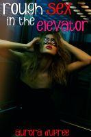 Aurora Dupree - Rough Sex in the Elevator