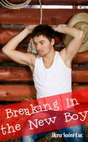Vera Saint-Luc - Breaking in the New Boy (Gay Cowboy Taboo Incest Erotica)