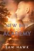 New Boy at the Academy by Sam Hawk