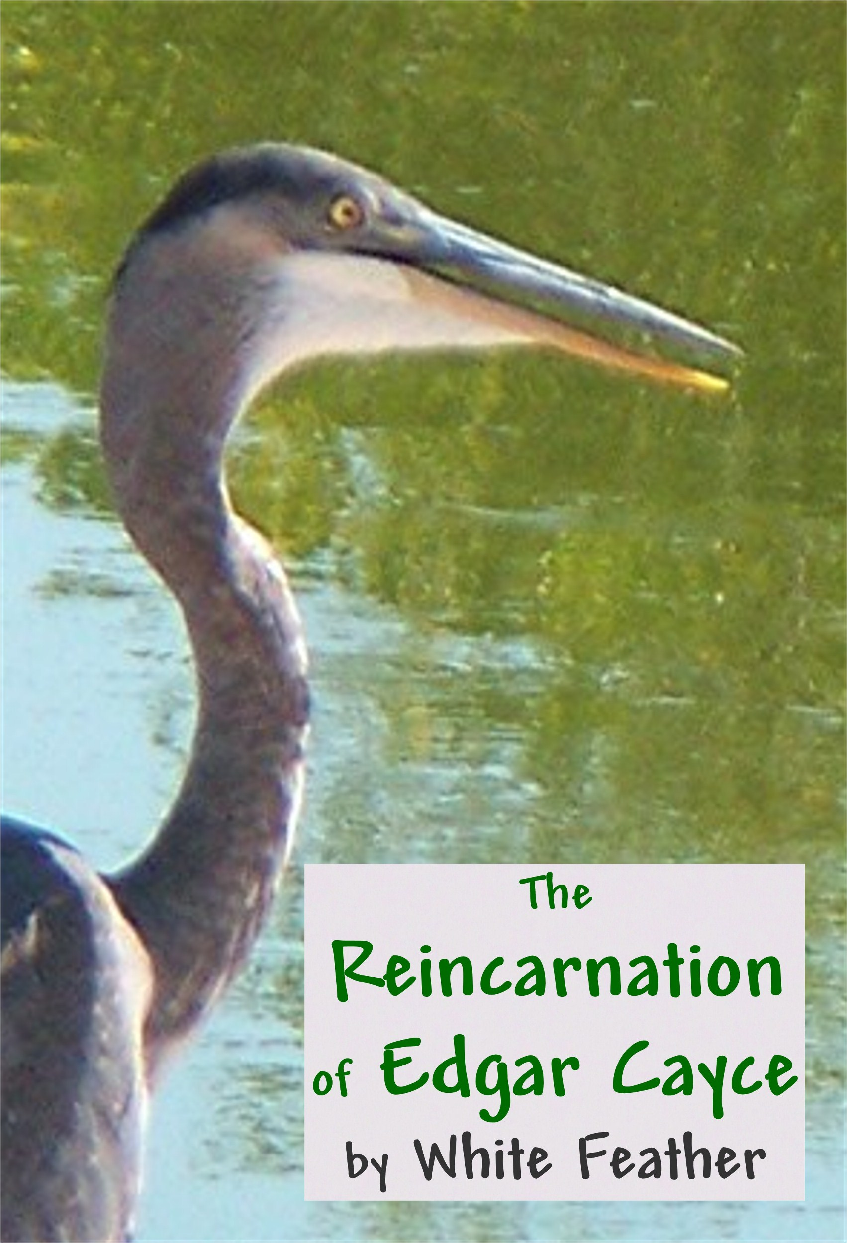 The Reincarnation of Edgar Cayce, an Ebook by White Feather