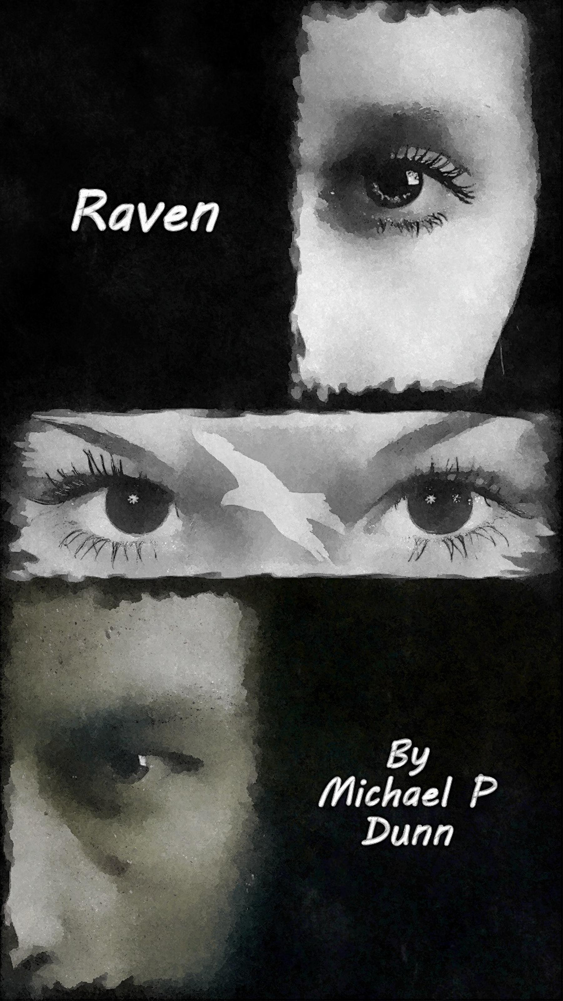 Raven, an Ebook by Michael P  Dunn