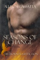 Allison Cassatta - Seasons of Change