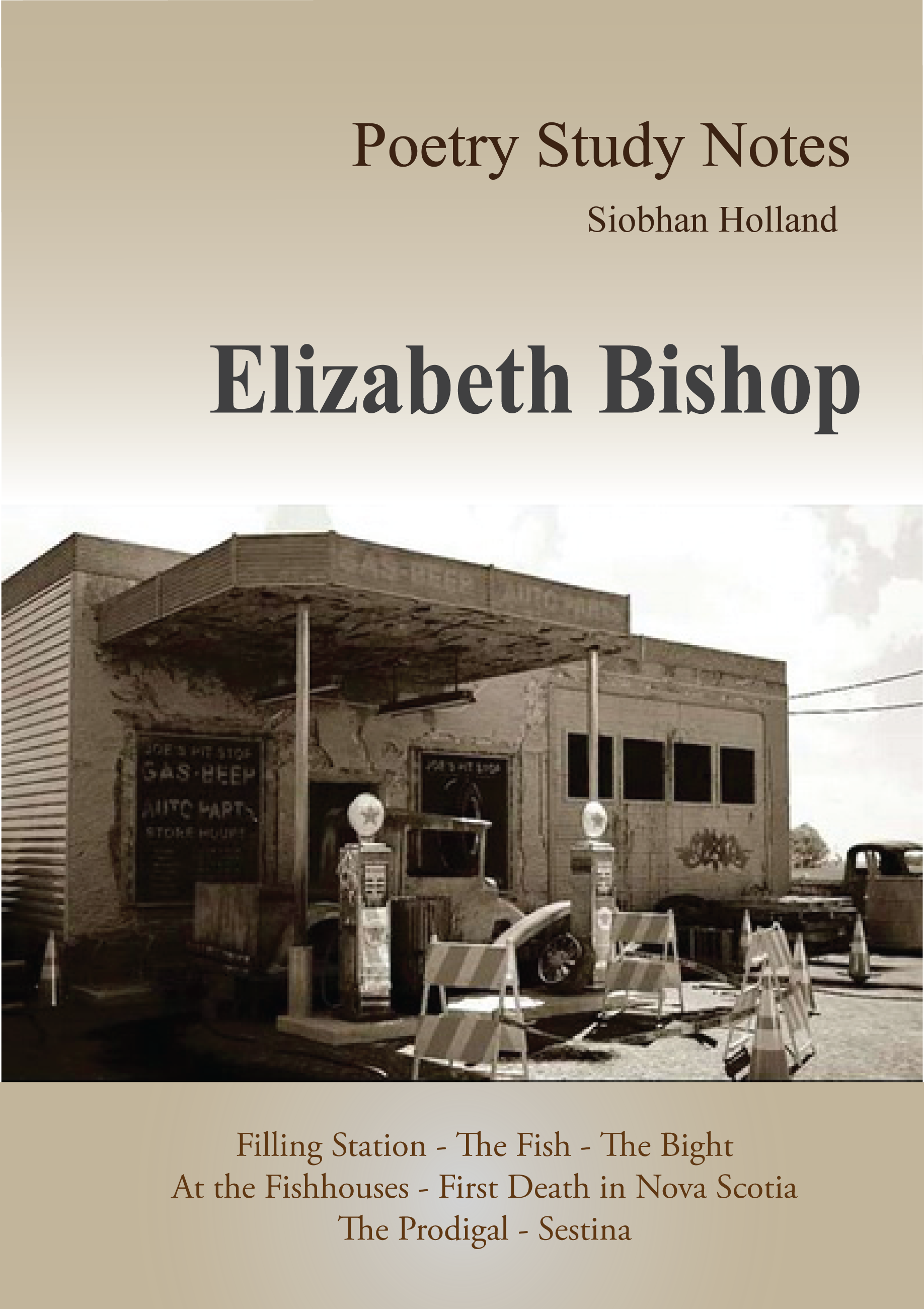 "elizabeth bishops poem the fish essay Uni essay help uniessayhelpcom analyzing elizabeth bishop's "" the fish for this activity, you must read and respond to elizabeth bishop's poem ""the."