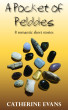 A Pocket of Pebbles by Catherine Evans Author