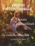 Francis Scott Fitzgerald  összes elbeszélései  II. kötet    Fordította Ortutay Péter by Ortutay Peter