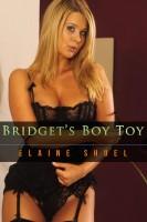 Elaine Shuel - Bridget's Boy Toy
