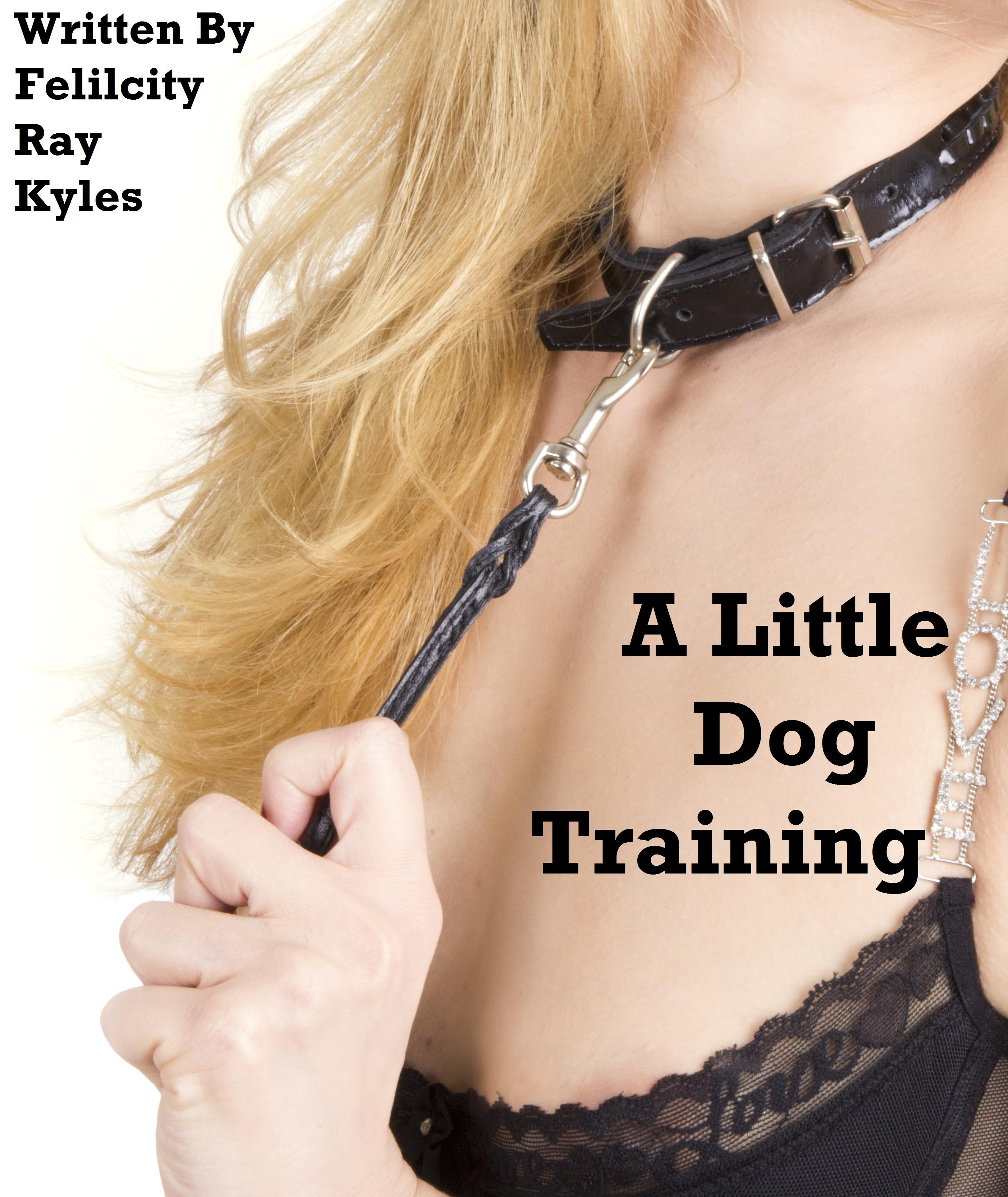 Petplay Training
