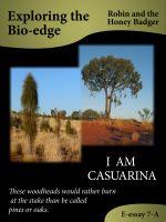 Robin and the Honey Badger - I Am Casuarina