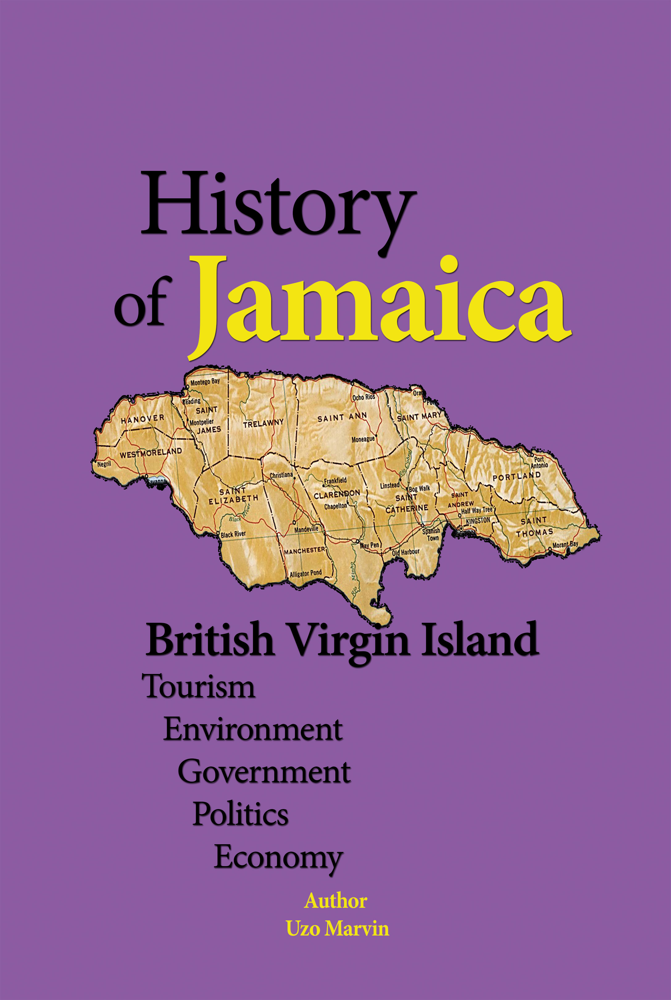 an introduction to the history of the jamaican economy Productivity and competitiveness in the jamaican economy january 2003 this study was prepared by mr andrew s downs phd, professor of economics and.