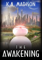 K.A. Madison - The Awakening - Book 1 of The Nether Chronicles