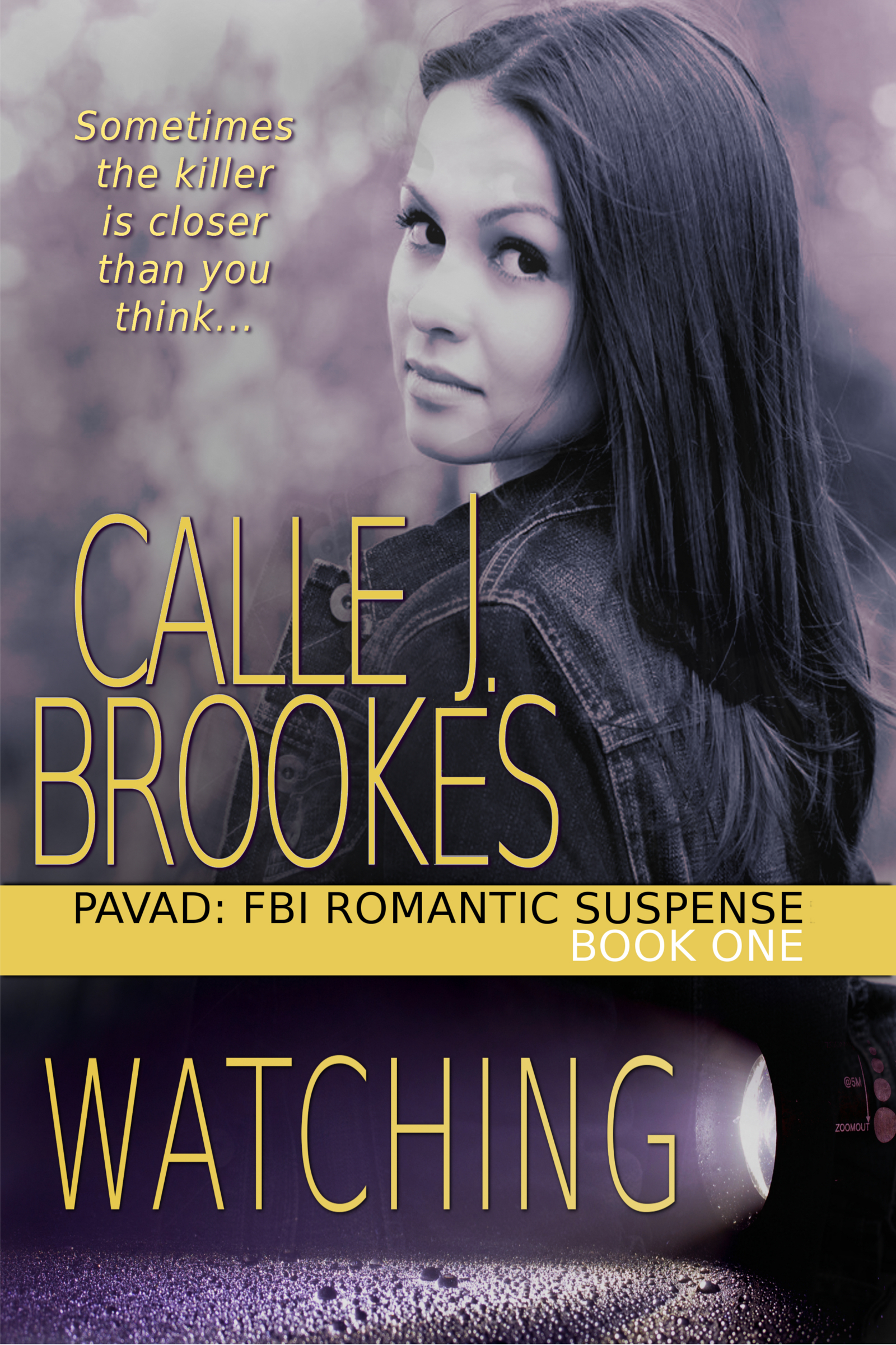 Watching: PAVAD: FBI Romantic Suspense, 1 (sst-cclxxxii)